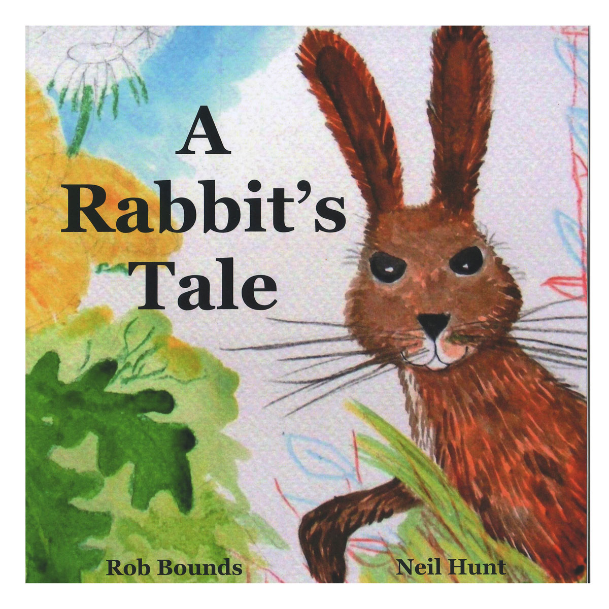 A Rabbit's Tale book