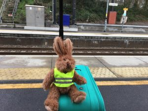 bunny waiting for train